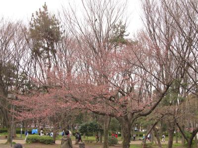 20120401_01.jpg